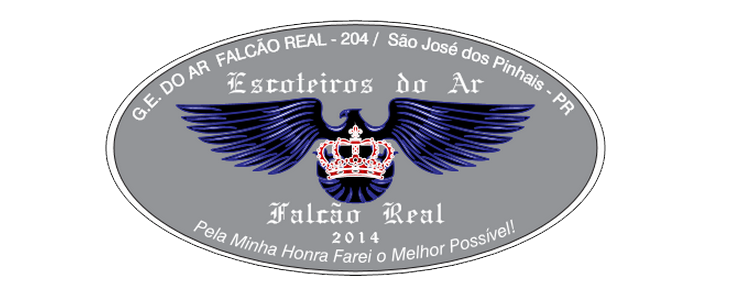 204/PR - GE DO AR FALCÃO REAL