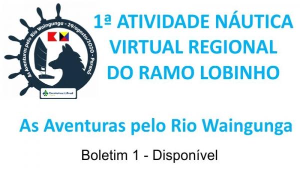 1ª ATIVIDADE NÁUTICA VIRTUAL REGIONAL RAMO LOBINHO