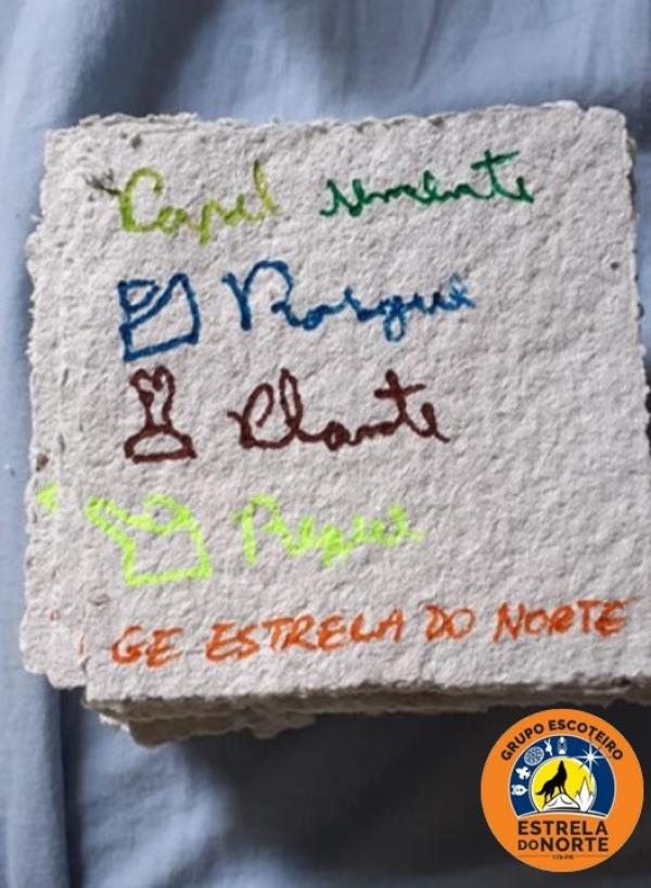 """""""Papel-Semente"""" foi o projeto do MUTECO do GE ESTRELA DO NORTE 179/PR"""